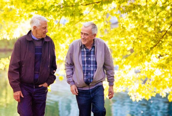 Gerevalideerde ouderen wandelen door een park